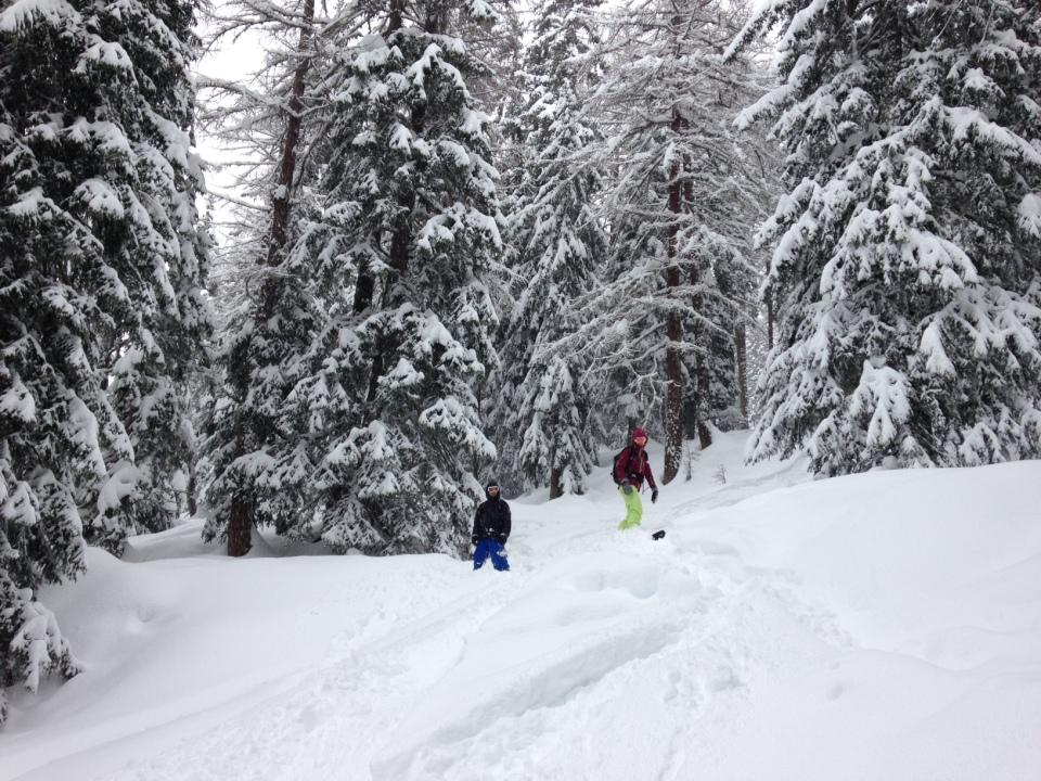 Courmayeur offre une belle forêt à rider; les pentes sont assez soutenue, exceptionnelle lorsque la neige tombe et la visibilité faible.