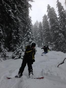 En snowboard dans la forêt de Courmayeur