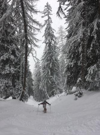 en ski hors pistes dans la foret de courmayeur