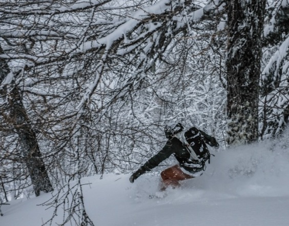 Snowboard en forêt